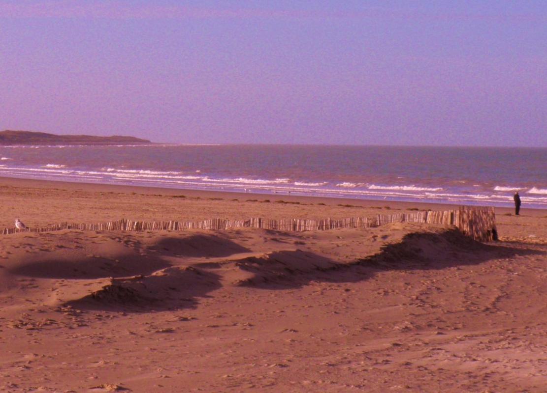 Photographie Calais la plage soleil rasant
