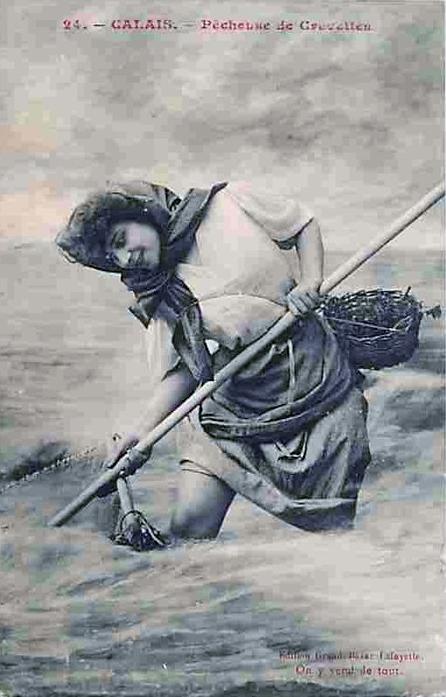 Calais matelote du courgain
