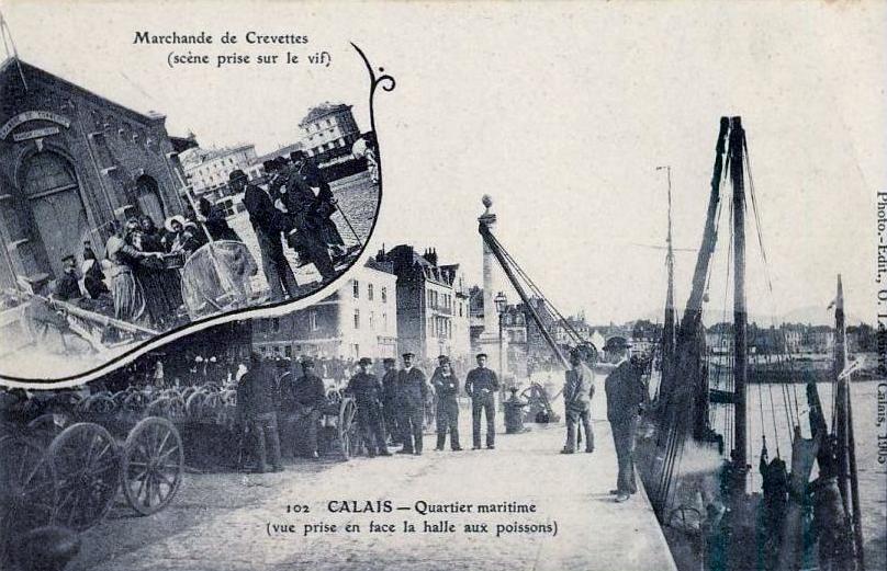 Calais marchande de crevettes